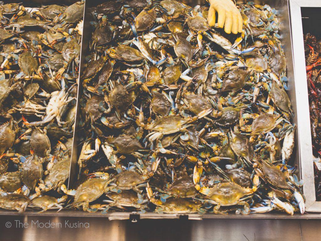 Municipal Fish Market