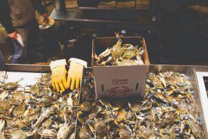 A Night at the Fish Market – Washington DC